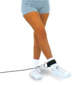 Профессиональный тренажер Body Solid Боди Солид  TS31 Ремень для тренировки мышц бедра и ягодиц. - магазин СпортДоставка. Спортивные товары интернет магазин в Москве